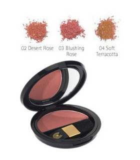 ROUGE POWDER 02-04
